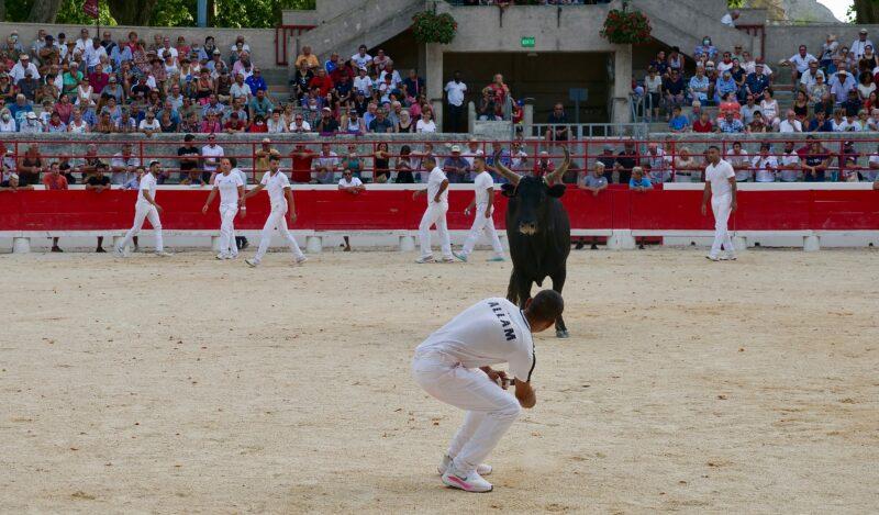 1634201232 481 BEAUCAIRE La Palme dOr for Vincent Marignan and a bonus