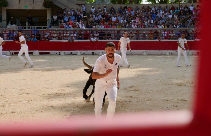 1634201232 529 BEAUCAIRE La Palme dOr for Vincent Marignan and a bonus