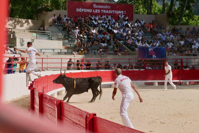 1634201233 124 BEAUCAIRE La Palme dOr for Vincent Marignan and a bonus