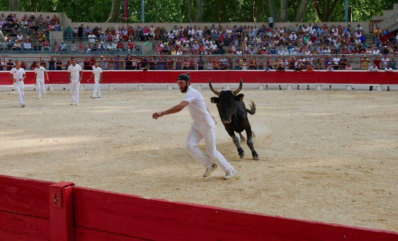 1634201233 2 BEAUCAIRE La Palme dOr for Vincent Marignan and a bonus