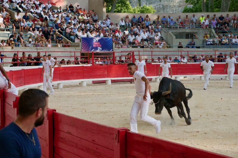 1634201234 816 BEAUCAIRE La Palme dOr for Vincent Marignan and a bonus