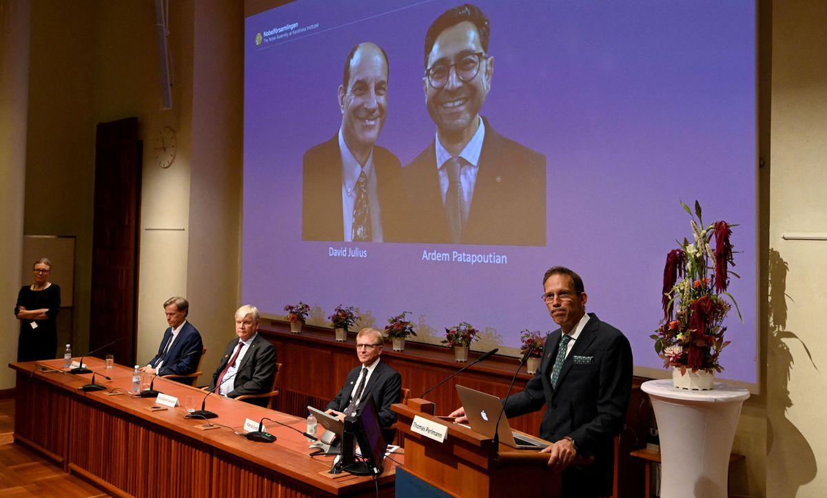 Nobel Prize in Medicine for David Julius and Ardem Patapoutian